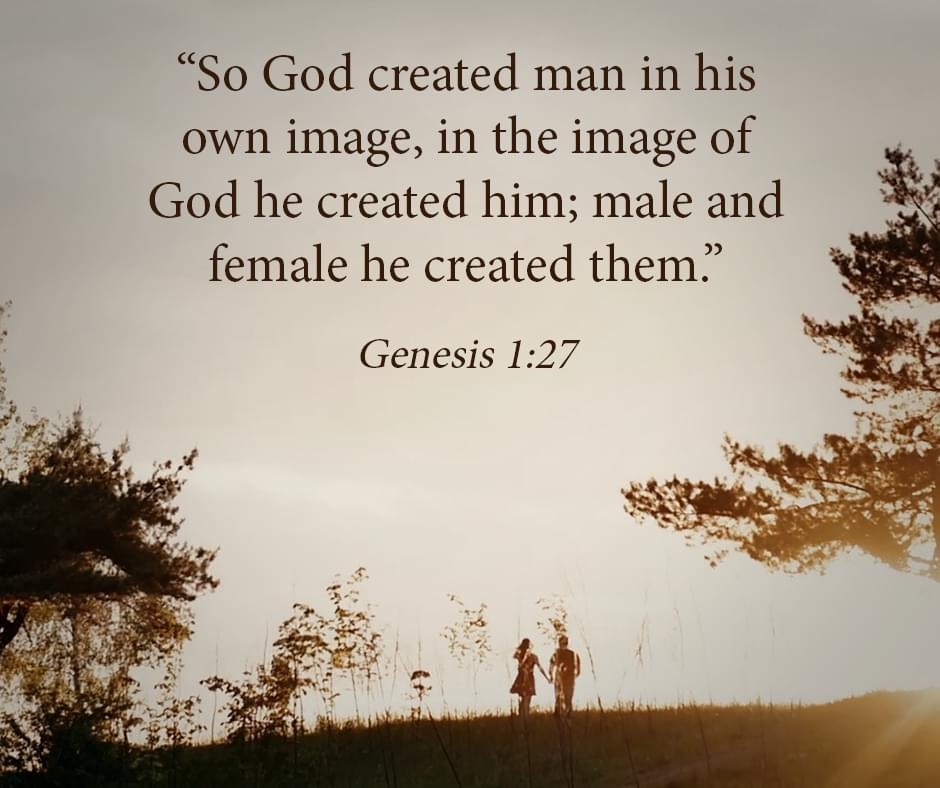 "EBC-Verse Genesis 1:27 ""...he created them."""