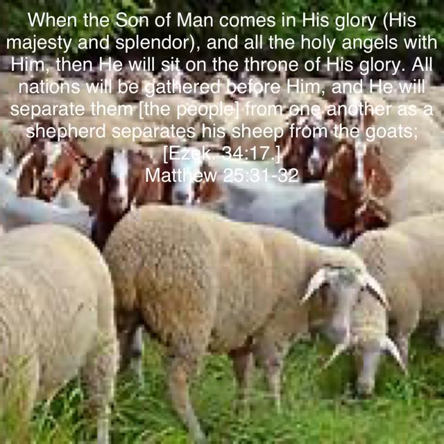 Verse - Matthew 25:31-32